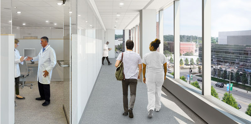 Clinical Area Renderings