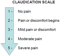 claudication scale