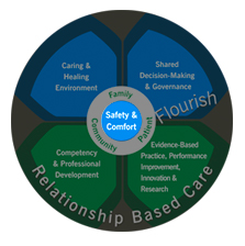 Professional Practice Model - Safety & Comfort