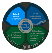 Professional Practice Model - Caring & Healing Environment