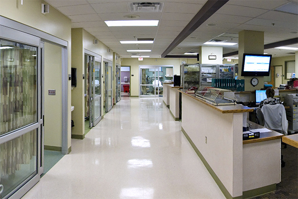 Image of Lodi Hospital Hallway