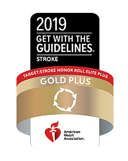2018 Get With the Guidelines Stroke Gold Plus Award