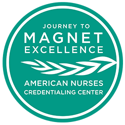 Journey to Magnet Excellence Logo